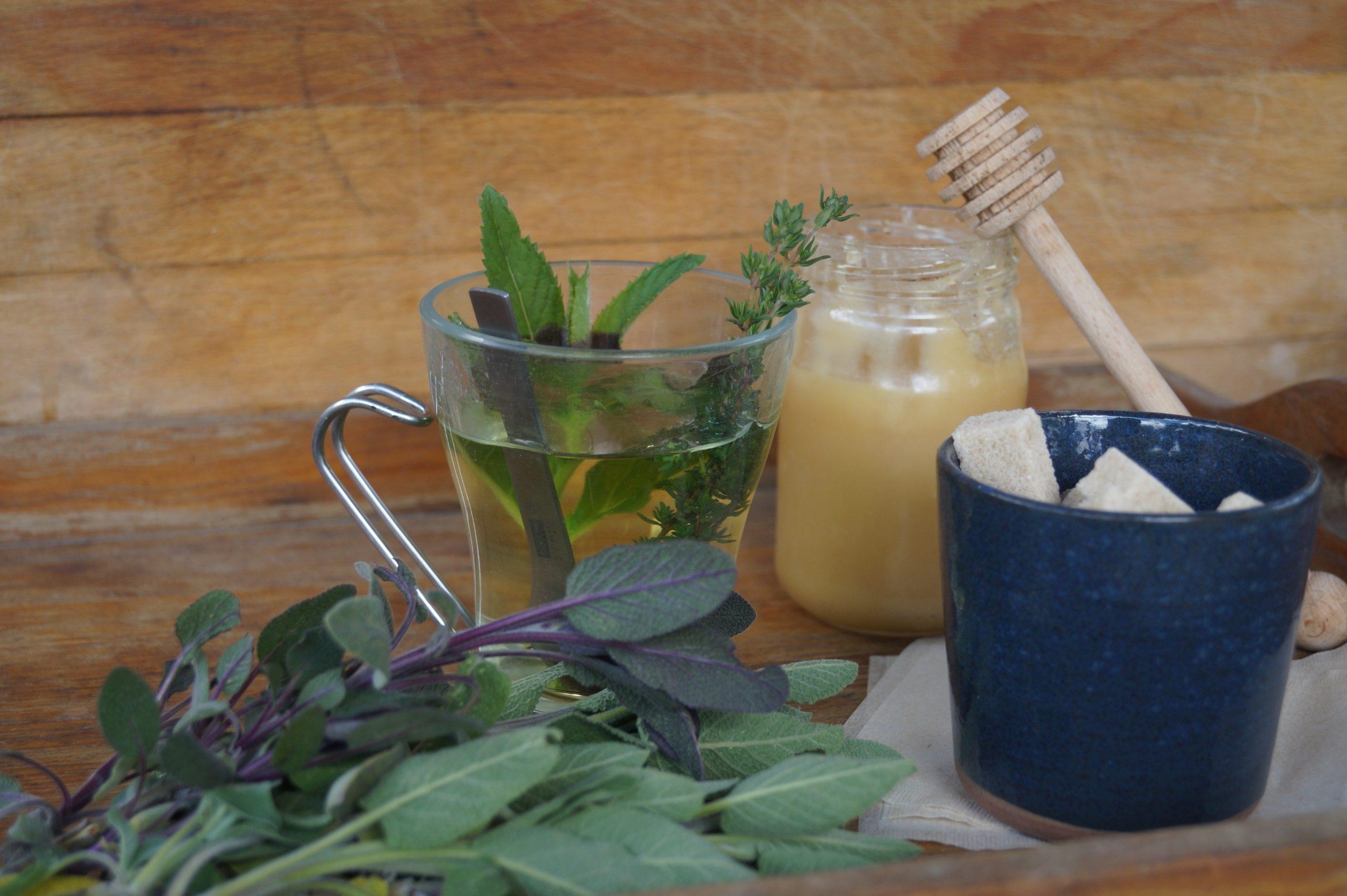 tasse avec tisane de plantes fraiches et miel