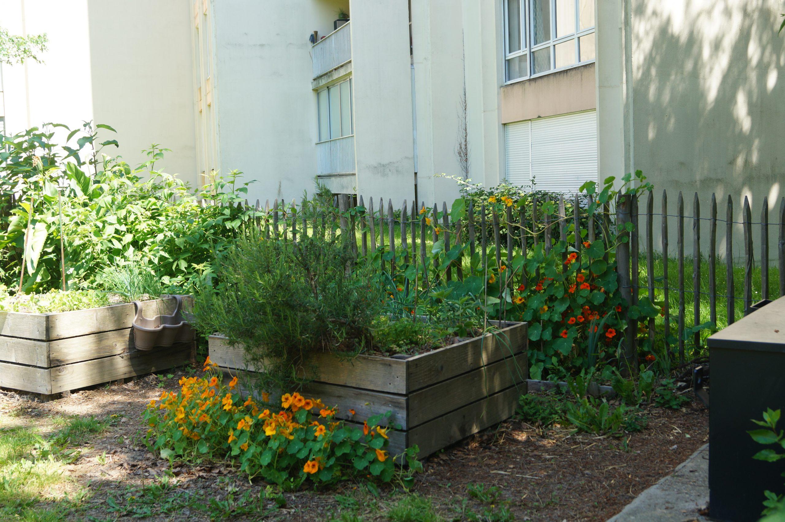 bac pour jardin en pied d immeuble