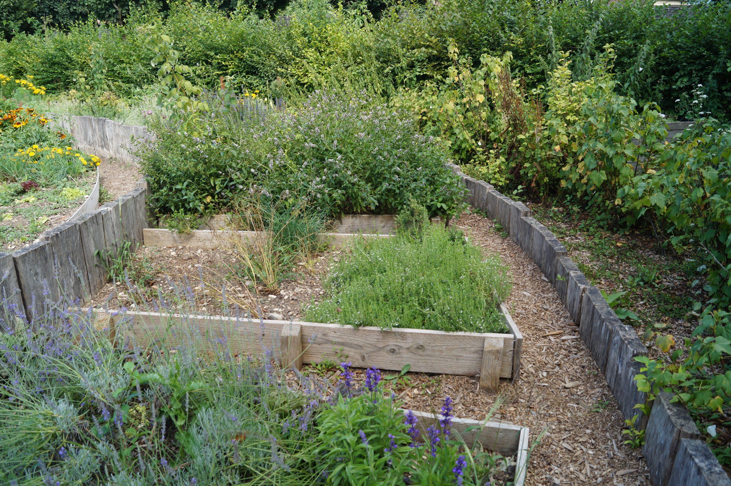 jardins délimités avec planche