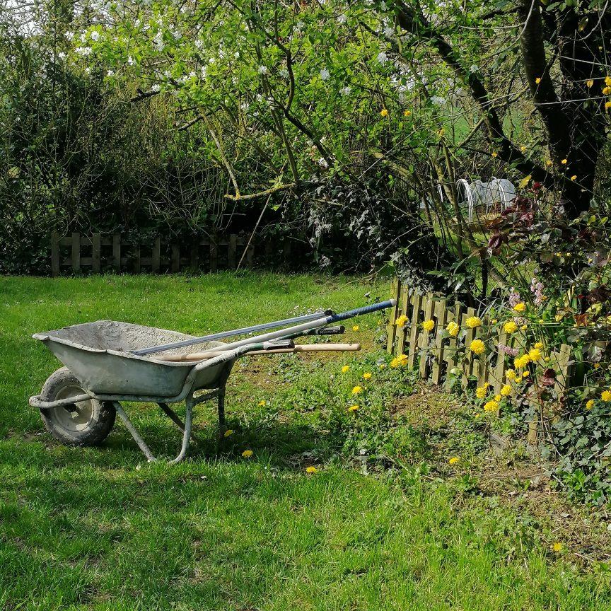 brouette et outil dans jardin au printemps